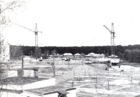 Территория бывшего питомника, 1988 г.
